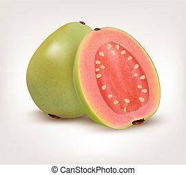 fris, fruit., guava, groene, vector.