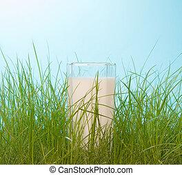 fris, gras, groene, melk