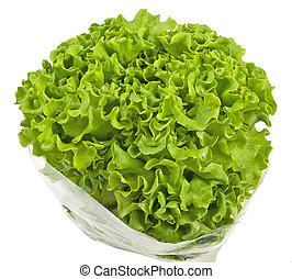 fris, organisch, groene, krullende lettuce