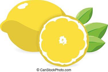 fris, vector, illustration., citroenen, leaves.