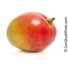 fris, witte , fruit, vrijstaand, mango