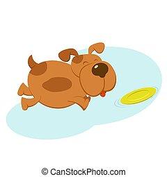 frisbee, chien, heureux