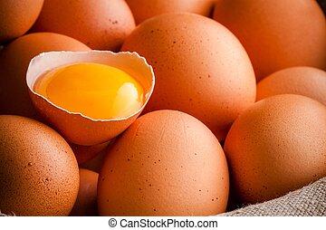 frisch, bauernhof, eier