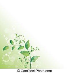 frisch, blätter, grün, zweig