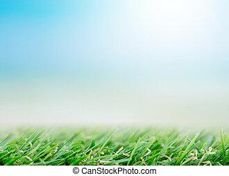 frisch, fruehjahr, grünes gras, unter, schöne , blauer himmel, und, sonnenlicht, -, gebrauch, für, hintergrund, in, natürlich, sommer, begriff