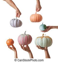 frisch gemalt, handgearbeitet, bunte, kã¼rbis, in, a, pastellfarben, besitz, per, hände, a, weißes, hintergrund.