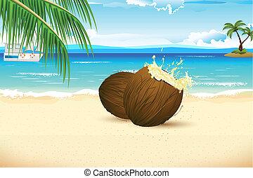 frisch, kokosnuss, auf, meer, sandstrand