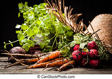 frisch, organische , gemuese
