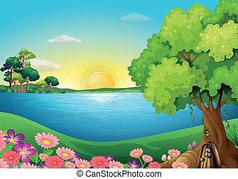 frische blumen, treehouse, riverbank