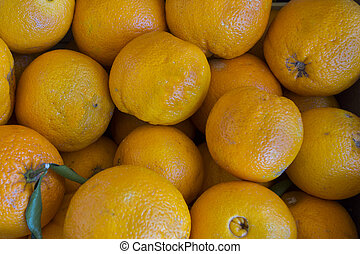 frische früchte gemüse