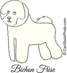 frise, colorido, bichon, perro