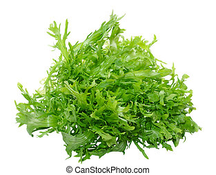 Frisee - Fresh frisee chicory leaves isolated on white...