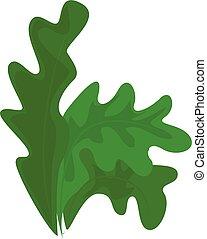 Frisee lettuce icon, cartoon style - Frisee lettuce icon....