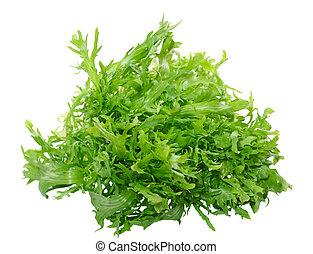 Frisee - Fresh frisee chicory leaves isolated on white...
