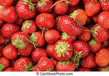 frisk, baggrund, jordbær