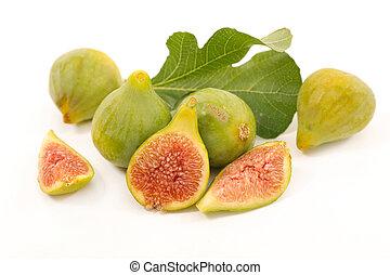frisk, grönt fikonträd