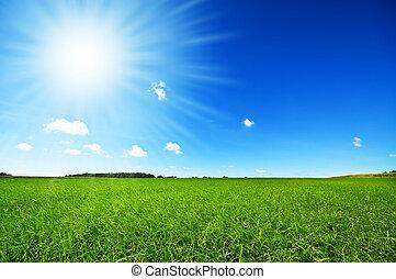 frisk, grönt gräs, med, blanka blåa, sky