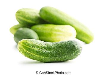 frisk, grønne, cucumbers.
