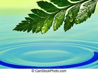 frisk, grønnes blad, jeg reflekterede ind, rendered, vand