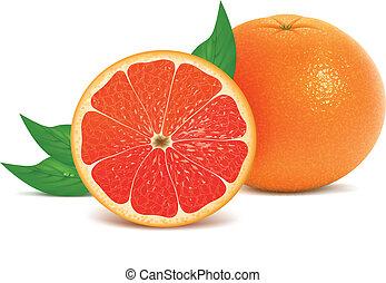 frisk, grapefrukter, med, bladen