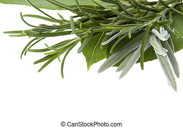 frisk, herbs., vik leaves, lavendel, rosmarin