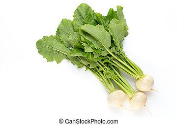 frisk, hvid, omkring, turnip, radish, på hvide, baggrund.