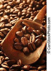 frisk, kaffe böna, a, dyrbar, artikel