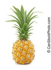 frisk, mini, ananas, frukt