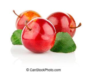 frisk, plommon, frukter, med, grönt lämnar