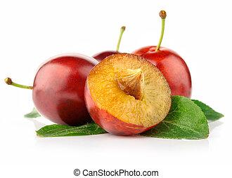 frisk, plommon, frukter, med, snitt, och, grönt lämnar