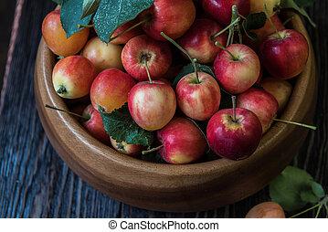 frisk, skörd, äpplen
