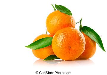 frisk, tangerine, frukter, med, grönt lämnar, isolerat