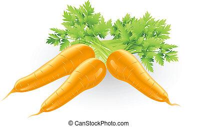 frisk, velsmagende, appelsin, gulerøder, illustration
