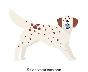 Frisky spotted dog playing with ball. Playful adorable purebred doggy or puppy isolated on white background. Funny cute domestic animal or pet. Colorful vector illustration in flat cartoon style.