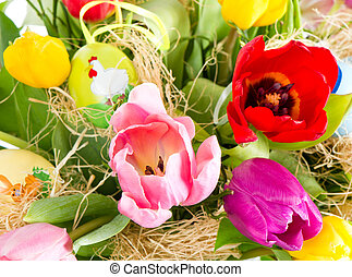 friss, eredet, tulipánok, noha, easter ikra