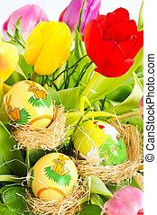 friss, eredet, tulipánok, wuth, easter ikra