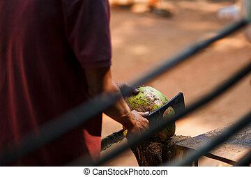friss, kókuszdió, kés, nyílás, zöld, nagy