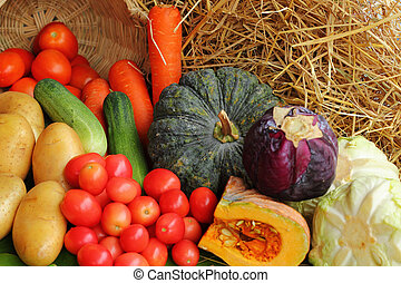 friss, vegetable.