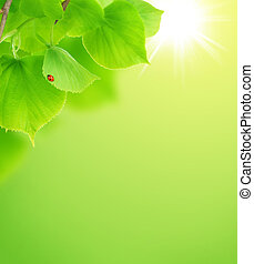 friss, zöld, zöld háttér