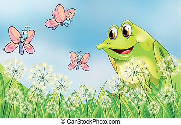 Frog and butterflies in the garden