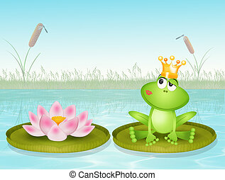 frog and lotus flower on water lily