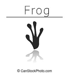 Frog animal track with name and reflection on white ...
