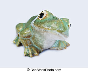 Frog - Green frog isolated on a white background