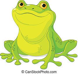 Frog - Illustration of cute green frog