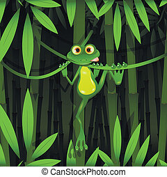 frog in a jungle
