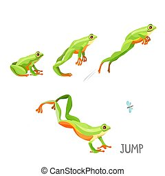 Frog jumping by sequence cartoon vector illustration -...