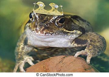 Frog King