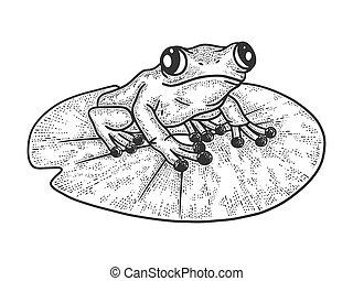 frog on a leaf of a water lily sketch engraving vector illustration. T-shirt apparel print design. Scratch board imitation. Black and white hand drawn image.