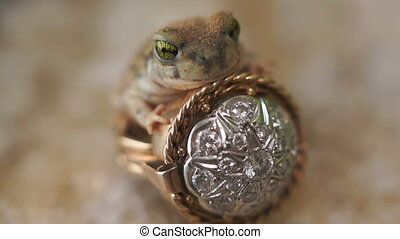 Frog Prince Ring Fairytale Fantasy - Small frog or toad...