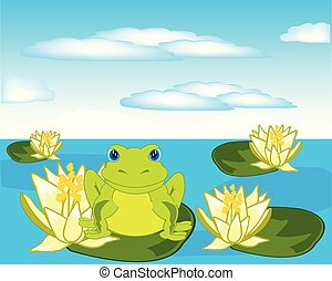 Frog sits on water lily in pond